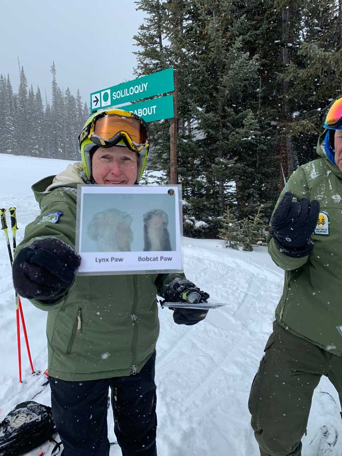 Ski with a Ranger shows paw prints during tour at Copper